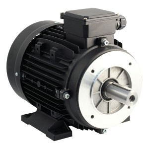Motor 3kW 3 fases 1450 rpm para bombear WS